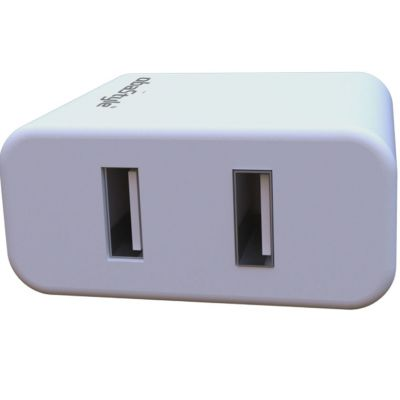 2.1A DOUBLE USB TRAVEL WALL CHARGER WITH TYPE C CABLE