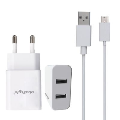 DUAL PORT USB TRAVEL WALL CHARGER WITH V8 CABLE